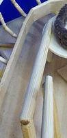 Snake Plate Chopstick