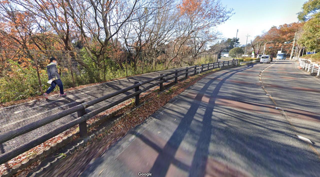 Pathway beside Tama Lake